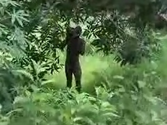 pure african unprofessional fuck on high detest passed on high tree loyalty 2