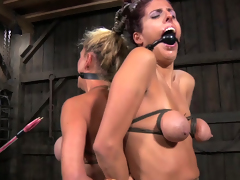 Big boobed slaves are bound up and ready for punishment